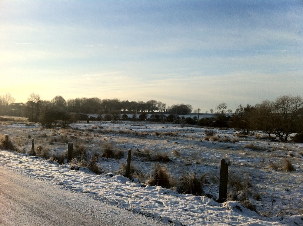 Norfolk snow – looks good if nothing else :)