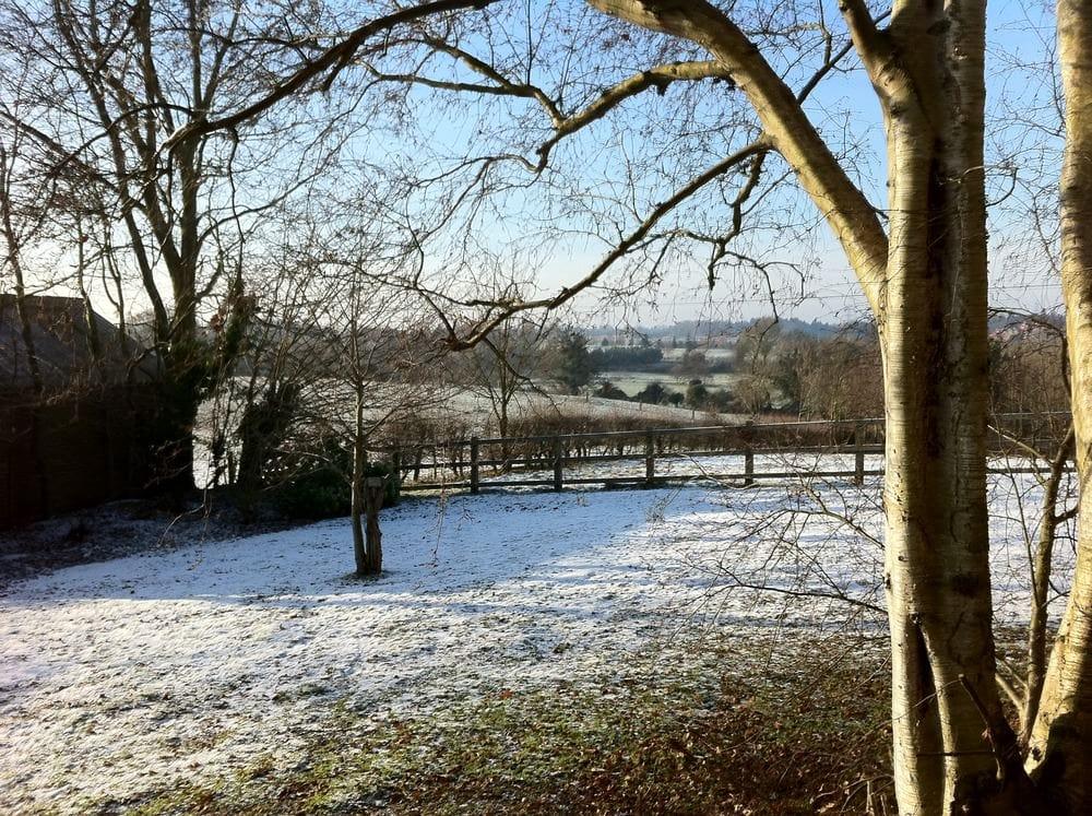 Wonderfully winter morning here – suitably festive.